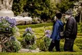 Majówka 2021. Ogrody Kwiatów w Zamku Książ w Wałbrzychu (ZDJĘCIA)