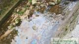 Szklarska Poręba: wyciek paliwa do strumienia