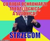 Zobacz najlepsze heheszki z Wrocławia i innych miast Dolnego Śląska