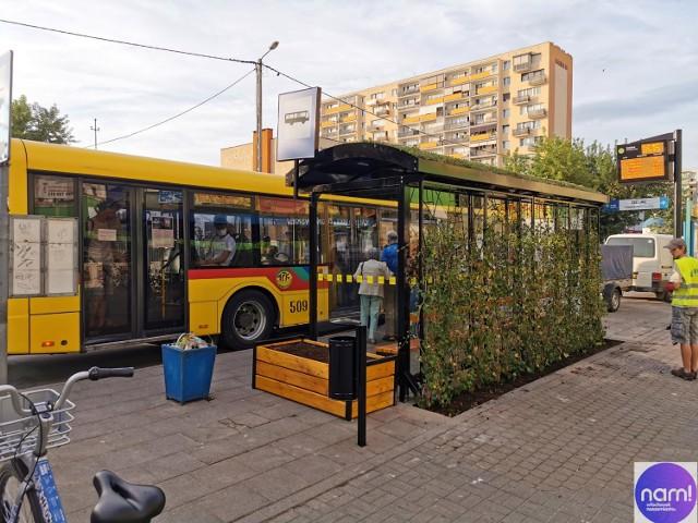Pierwszy zielony przystanek we Włocławku stanął na ulicy Kaliskiej.