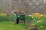 Otwieramy sezon ogrodniczy. Od jakich prac zacząć?