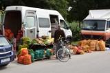 Ceny owoców i warzyw na targu w Jędrzejowie. Jak zmieniły się w ciągu tygodnia? [GALERIA]