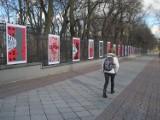 Galeria Saska w Lublinie - alternatywa dla zamkniętych muzeów