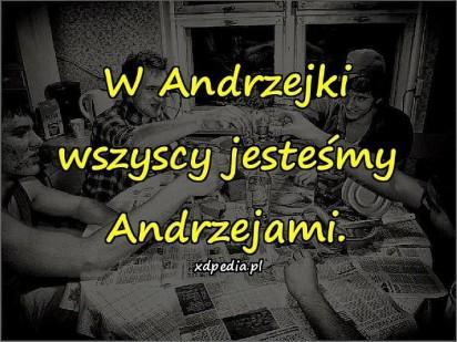 Dziś wszyscy jesteśmy Andrzejami! MEMY ANDRZEJKOWE