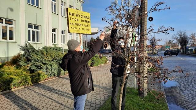 Mieszkańcy w obronie alei drzew na ulicy 700-lecia Żninie. Na zdjęciu od lewej  Dominik Księski i Tomasz Gronet.
