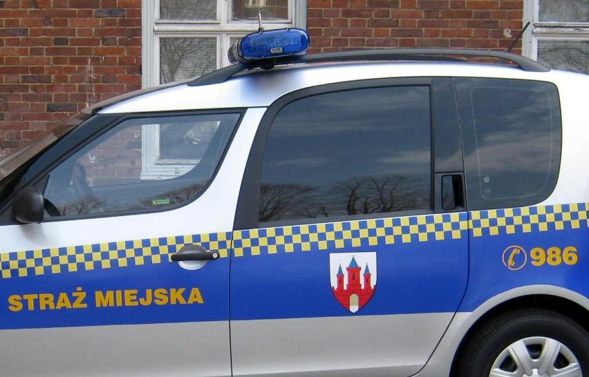 Mróz w Malborku. Strażnicy miejscy pomogli bezdomnym, dostają też dużo zgłoszeń od kierowców