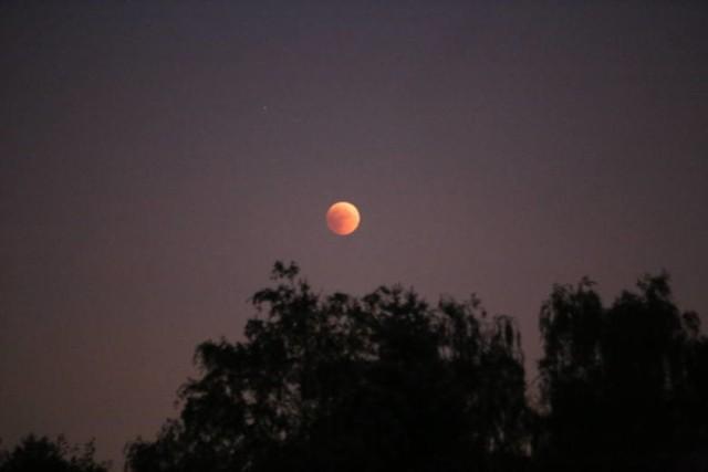 Zaćmienie księżyca 2018 można było oglądać na terenie naszego kraju. To wyjątkowe zjawisko astronomiczne. To bowiem pierwsze tak długie zaćmienie od 100 lat.   Więcej zdjęć w dalszej części galerii >>>