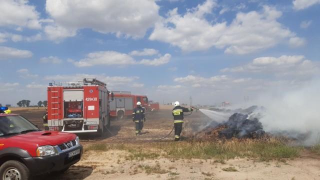 Strażacy walczyli dziś z ogniem między innymi w Lisewie