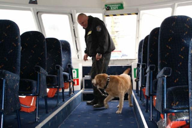 Egzamin dla policyjnych psów [ZDJĘCIA]