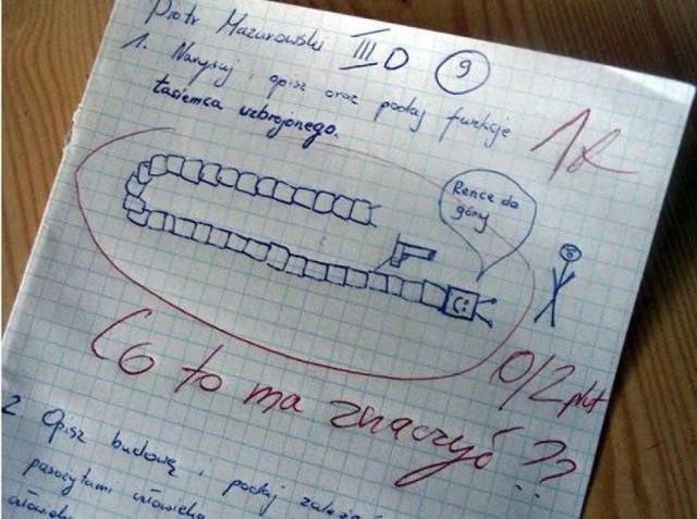 Trudno uwierzyć, co na klasówkach potrafią pisać (i nie tylko!) polscy uczniowie. Oglądając te sprawdziany, uśmiejecie się do łez, zwłaszcza że poczucia humoru często nie brakuje też nauczycielom. Oto hity ze szkolnych klasówek!  Przejdź do kolejnego zdjęcia --->