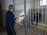 Policjanci z Człuchowa zatrzymali złodziei paliwa z Rychnów, gdy ci przyjechali ponownie okraść stację paliw w okolicy