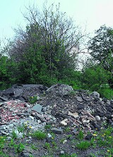 Życie po śmieciach: Dzikie wysypisko przy ulicy Mikołowskiej w Mysłowicach