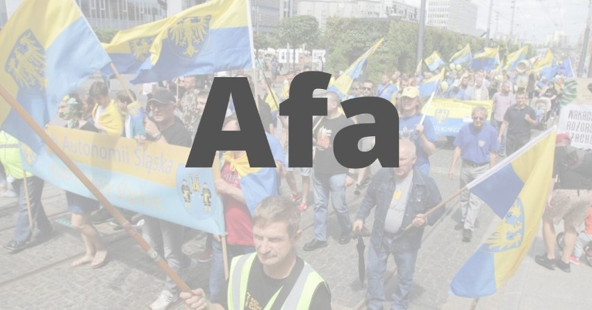 "AFA - po polsku ""małpa"", po portugalsku ""zapał"".""Małpa""..."