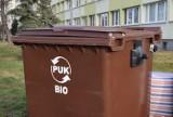 Śmieci w Kaliszu. Jak segregować odpady biodegradowalne? Co do nich zaliczamy?