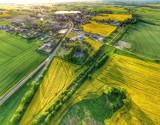 Pola w Mąkowarsku pod Bydgoszczą żółte od rzepaku. Piękny widok! Zobacz zdjęcia z drona