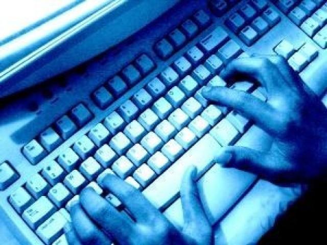 Sobota w sieci