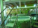 Park Wodny w Chełmie. Rozpoczęły się grupowe zajęcia Aqua Aerobiku
