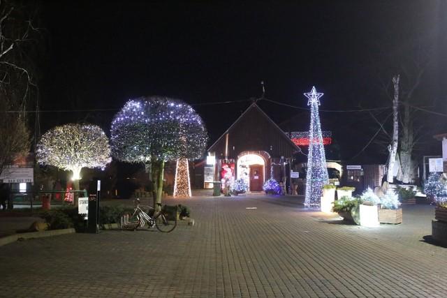 Uliczne dekoracje pojawiły się na ulicach i budynkach Kwidzyna oraz Miłosnej