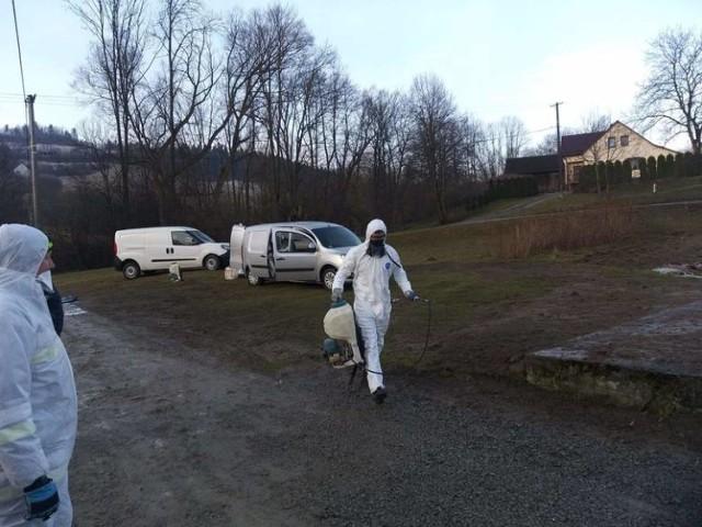 W jednym gospodarstwie w Biczycach Górnych do utylizacji trafiło blisko 8 tysięcy kur