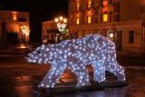 Chełm. Biały niedźwiedź i duch Bieluch w świątecznej odsłonie - zobacz zdjęcia