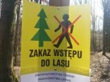 Kwiecień 2020 w Żarach. Zakaz wstępu na cmentarz, do lasu, zamknięte place zabaw, kolejki do sklepów, tak było rok temu