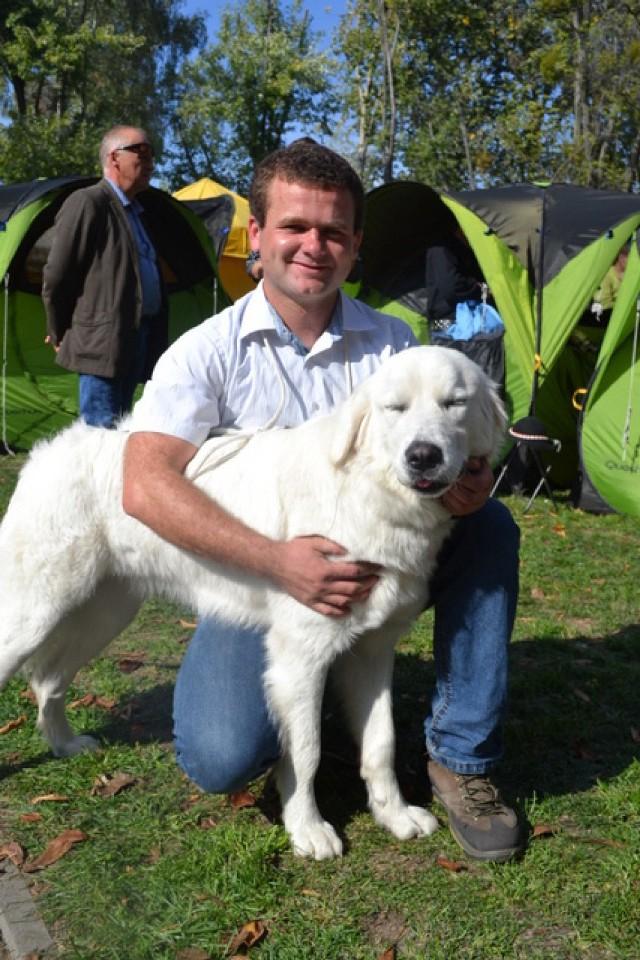 Wystawa psów w Rybniku
