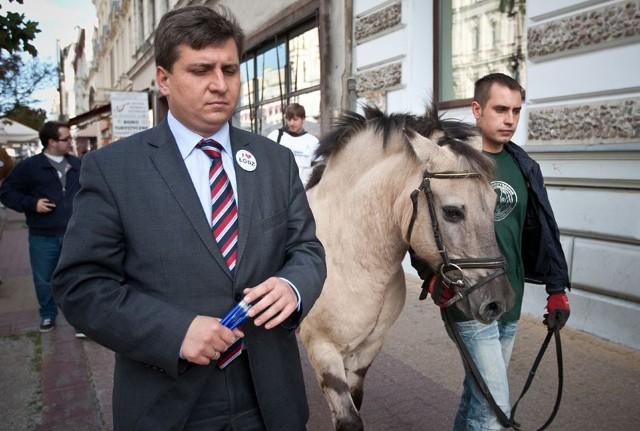"""Działacze PO namawiali łodzian, by """"nie dali zrobić się w konia""""."""