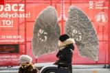Nowe czujniki jakości powietrza w Bydgoszczy - jakie mamy powietrze w mieście?