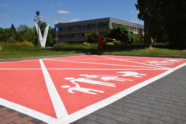 Różowy parking przy Urzędzie Miasta Tychy