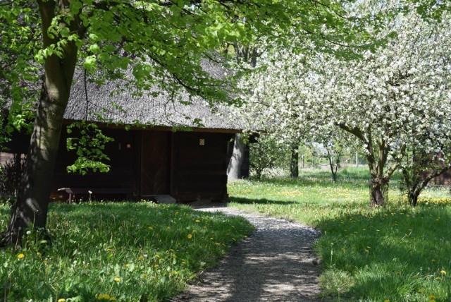 Odwiedź piękny park okalający dworek Marii Dąbrowskiej w Russowie