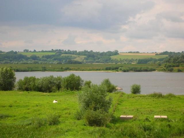 Dolina Dolnej Wisły między Bydgoszczą a Chełmnem.