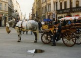 30 zdjęć Krakowa sprzed 30 lat! Tak wyglądało miasto w latach 90. Jesteście w stanie rozpoznać te miejsca? [ARCHIWALNE ZDJĘCIA]