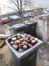 Poznaniacy segregują śmieci... Pojemnik pełen słoików z zepsutymi przetworami [ZDJĘCIA]