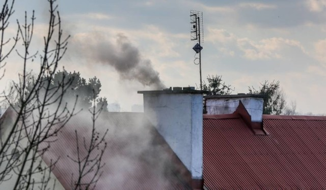 Mieszkańcy lokali komunalnych w Zabrzu, którzy zdecydują się na zakup ekologicznego źródła energii zostaną zwolnieni z czynszu