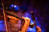 Forum Synagoga zaprasza na darmowy koncert orkiestry Arte dei Suonatori