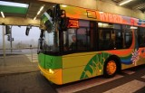 Poznań: Pasażerowie grzeją się w klimatyzowanych autobusach MPK