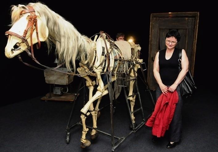 Jola Kunowicz zaprasza na wystawę Niech sczezną artyści