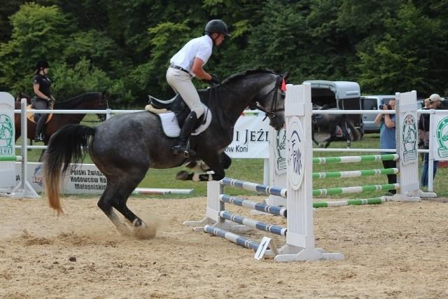 Zawody jeździeckie w skokach przez przeszkody w Janowie