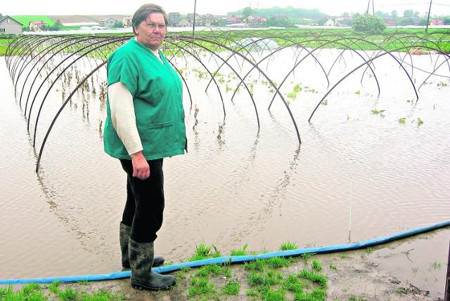 Halina Latała z Wawrzeńczyc podczas powodzi straciła uprawy, jakie miała w tunelach