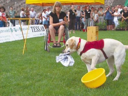 Aneta Kułach - pies serwisowy pomoże nawet rozwiesić pranie.