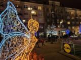 Zachwycająca, rozświetlona Gdynia w plebiscycie! Zasługuje na tytuł świetlnej stolicy Polski?