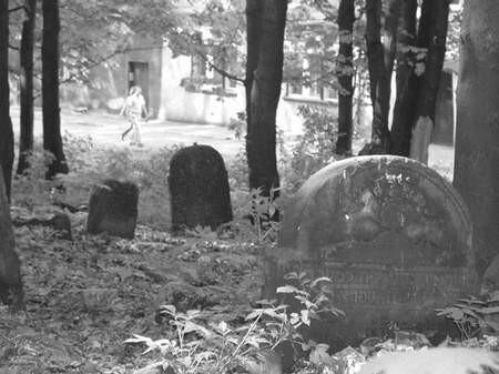 Cmentarz od czasów II wojny światowej  nieustannie niszczeje. Foto: Łukasz podlejski