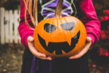 Halloween w Warszawie. Strrrraszne imprezy dla dzieci [PRZEGLĄD]