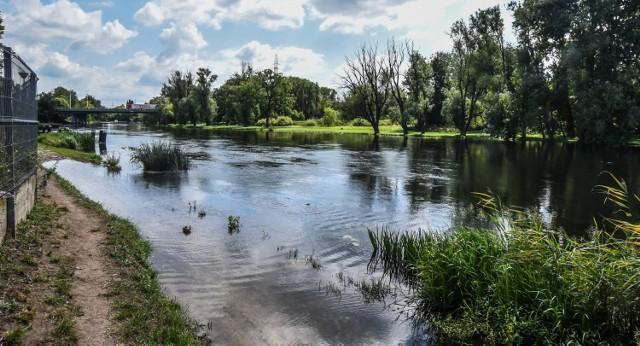 Bulwary na lewym odcinku Brdy sa regularnie zalewane. To zdjęcie wykonane w ubiegłym roku, po zrzucie wody z zapory w Koronowie.