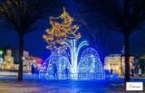 Ostatnia chwila, by zobaczyć świąteczne iluminacje w Bełchatowie