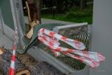 Tarnów. Wichura powalała drzewa w regionie. Jedno z nich uszkodziło ogrodzenie w Parku Strzeleckim  [ZDJĘCIA]