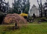 Do parku w Gołuchowie w końcu nieśmiało zawitała wiosna ZDJĘCIA
