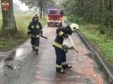 Plama oleju na drodze. Interweniowali strażacy