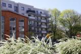Ceny mieszkań, czerwiec 2021. Czy coś zatrzyma szalone podwyżki? Bańka mieszkaniowa rośnie w wielu krajach