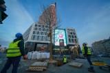 W centrum Warszawy posadzono 14-metrowe drzewo. To nowy symbol ekologii